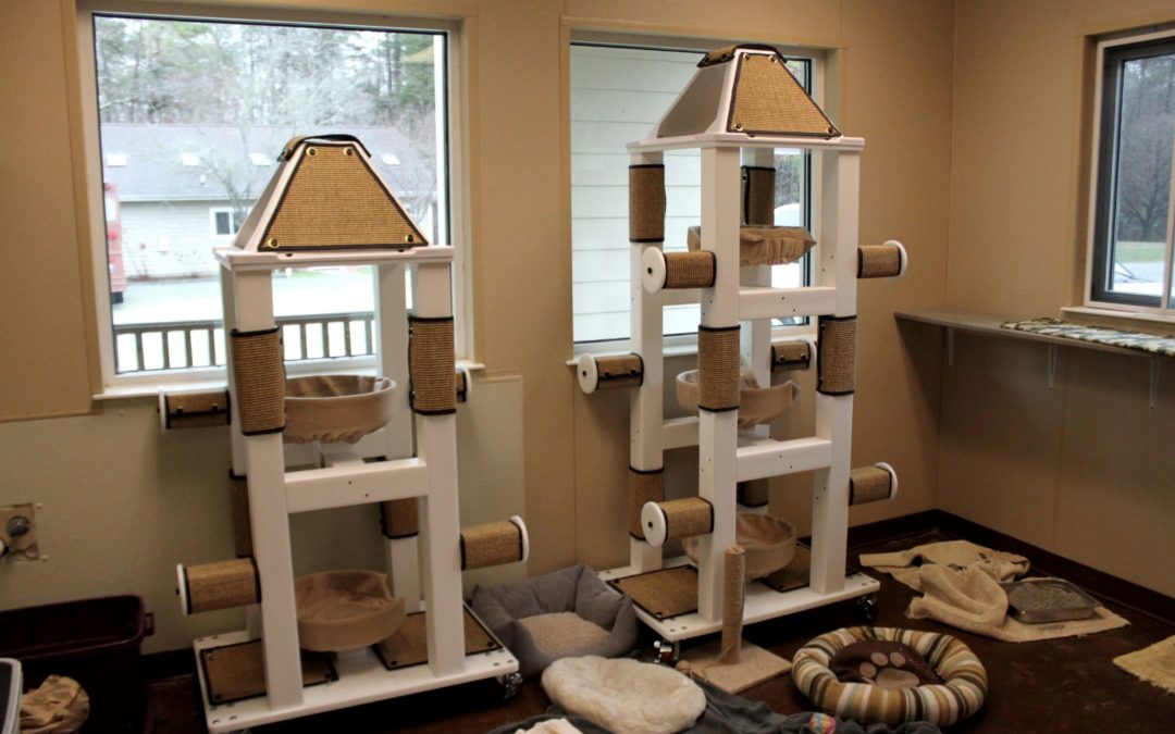 New Cat Towers!